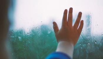 young-child-hand-on-window.jpeg