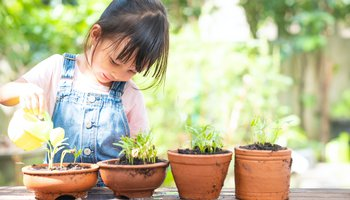 Young girl watering her sprouting plants outside