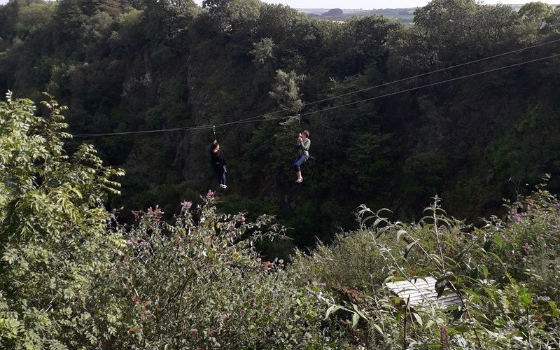 Our fostering staff zip-lining at a summer event